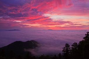 津別峠の雲海の写真素材 [FYI01742761]