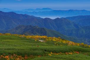 乗鞍岳位ヶ原の紅葉と浅間山の写真素材 [FYI01742992]