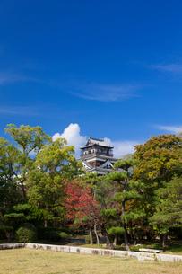 秋の広島城の写真素材 [FYI01743008]