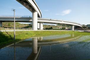 水田に写るジャンクションの写真素材 [FYI01743125]