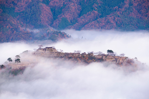 竹田城の雲海の写真素材 [FYI01743395]
