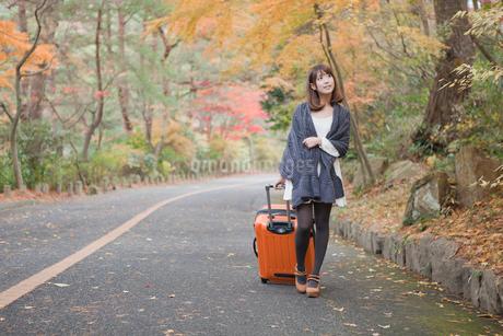 秋の紅葉した公園でトランクを引いている女性の写真素材 [FYI01743410]