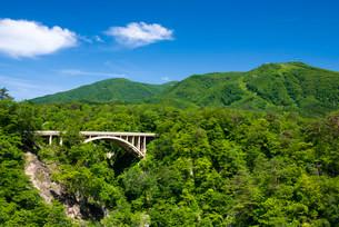 初夏の鳴子峡 大深沢橋の写真素材 [FYI01743474]