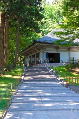 初夏の中尊寺金色堂の写真素材 [FYI01743552]