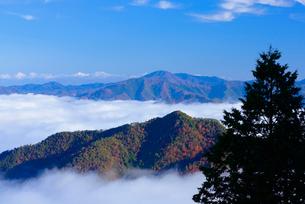 雲海と青空の写真素材 [FYI01743774]