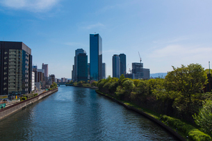 大阪城公園の新緑とビジネスパークの写真素材 [FYI01743900]