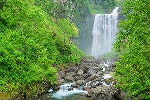 賀老の滝の写真素材 [FYI01743903]
