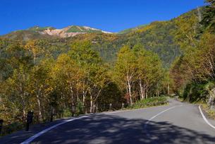 乗鞍エコーラインと紅葉の乗鞍岳の写真素材 [FYI01744029]