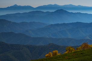 乗鞍岳位ヶ原の紅葉と南アルプスの写真素材 [FYI01744031]