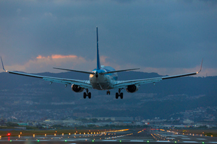 伊丹空港の飛行機の写真素材 [FYI01744504]