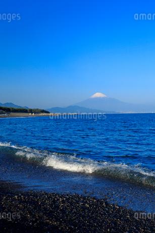 三保の松原から望む富士山の写真素材 [FYI01744731]