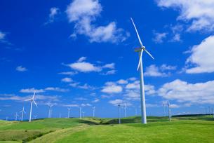 宗谷丘陵の風力発電の写真素材 [FYI01744957]