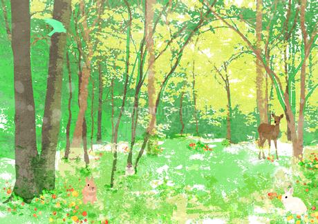 春の森の中のイラスト素材 [FYI01745680]