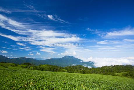 石鎚山の写真素材 [FYI01745992]