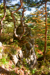 夫婦岩の写真素材 [FYI01746076]