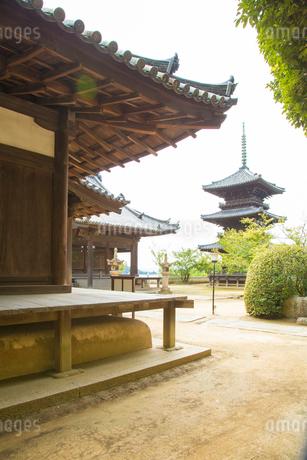 牛窓の本蓮寺の写真素材 [FYI01746209]