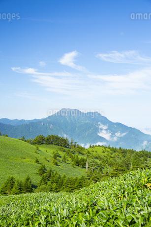 石鎚山の写真素材 [FYI01746215]