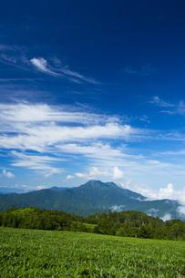 石鎚山の写真素材 [FYI01746319]