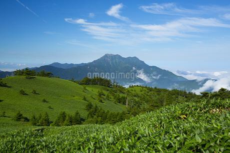 石鎚山の写真素材 [FYI01746323]