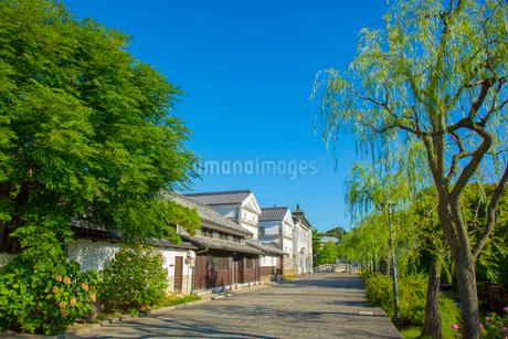 倉敷美観地区の町並みの写真素材 [FYI01746752]