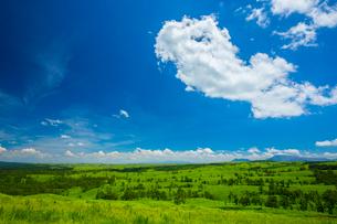 阿蘇の草原の写真素材 [FYI01746960]