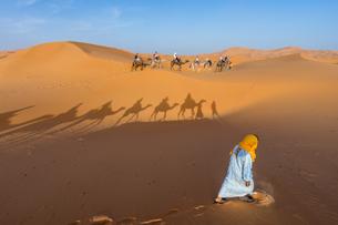 サハラ砂漠の写真素材 [FYI01746994]