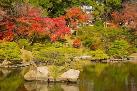 秋の縮景園の写真素材 [FYI01747015]