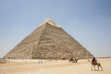 エジプト,ギザのピラミッドとラクダの写真素材 [FYI01747161]