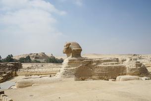 エジプト,ギザのスフィンクスの写真素材 [FYI01747198]