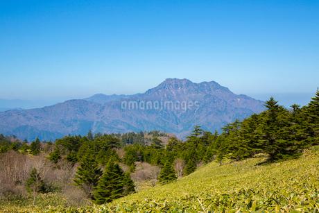 瓶ヶ森と石鎚山の写真素材 [FYI01747226]