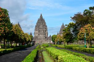 インドネシアの世界文化遺産プランバナン寺院群の写真素材 [FYI01747241]