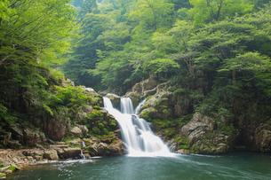 春の三段峡の写真素材 [FYI01747343]