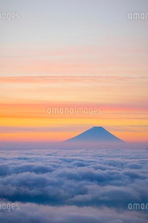 高ボッチ高原より雲海と朝焼けの富士山の写真素材 [FYI01747644]