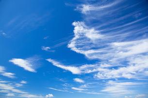 青空と雲の写真素材 [FYI01747743]