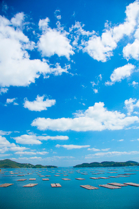 邑久町カキイカダのある風景の写真素材 [FYI01747812]