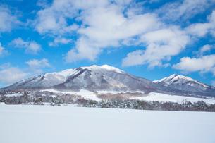 雪の蒜山高原の写真素材 [FYI01747844]