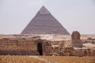 エジプト,ギザのピラミッドとスフィンクスの写真素材 [FYI01747883]