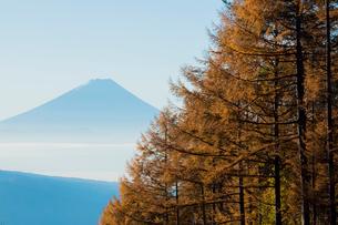 八ヶ岳高原ラインより朝霧の富士山の写真素材 [FYI01747939]