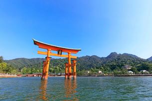 安芸の宮島 厳島神社の大鳥居の写真素材 [FYI01748003]