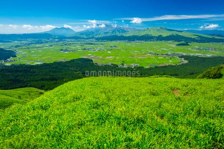 阿蘇大観峰より阿蘇山の写真素材 [FYI01748031]