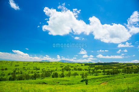 阿蘇の草原の写真素材 [FYI01748105]