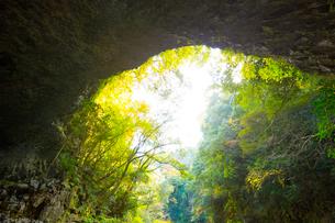 天岩戸神社の仰慕ケ窟の写真素材 [FYI01748110]