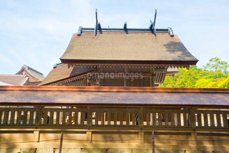 出雲大社の本殿の写真素材 [FYI01748113]