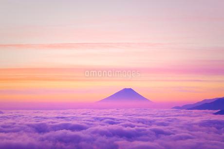 高ボッチ高原より雲海と朝焼けの富士山の写真素材 [FYI01748134]