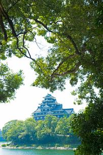 旭川と岡山城の写真素材 [FYI01748302]