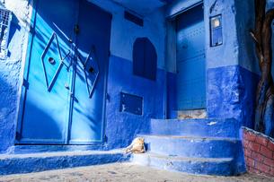 外国,モロッコ シャウエンの青い町並みの写真素材 [FYI01748479]