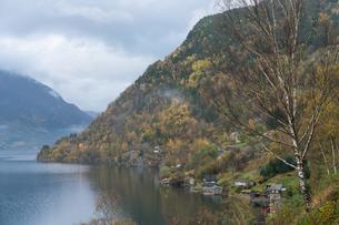 ノルウェー郊外の風景の写真素材 [FYI01749152]