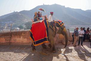 インド ゾウのタクシーの写真素材 [FYI01749198]