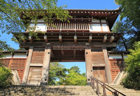 千秋公園 久保田城表門の写真素材 [FYI01749359]