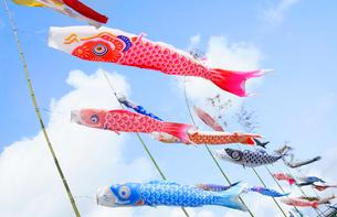大空に舞う鯉のぼりの写真素材 [FYI01749496]